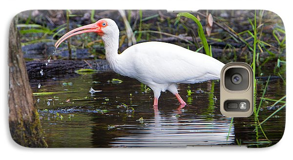 Ibis Drink Galaxy S7 Case by Mike Dawson