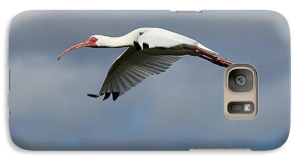 Ibis In Flight Galaxy Case by Carol Groenen
