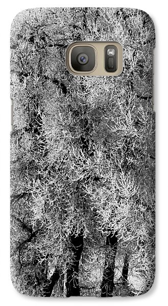 Galaxy Case featuring the photograph Iced Cottonwoods by Colleen Coccia