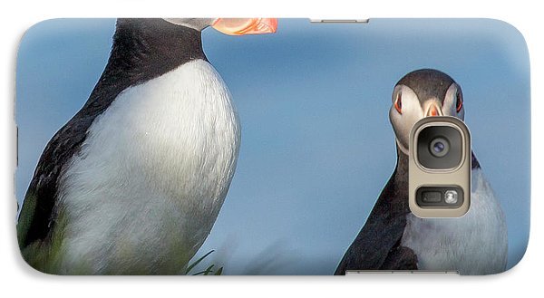 Puffin Galaxy S7 Case - Iceland Puffins  by Betsy Knapp