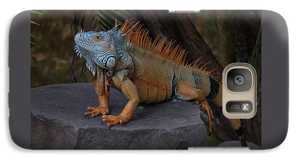 Galaxy Case featuring the photograph Iguana 2 by Jim Walls PhotoArtist