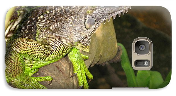 Galaxy Case featuring the photograph Iguana - A Special Garden Guest by Christiane Schulze Art And Photography