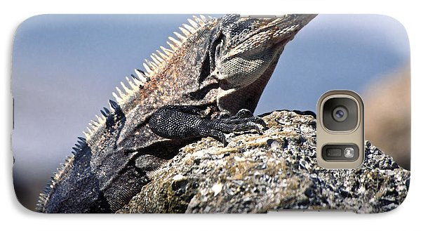 Galaxy Case featuring the photograph Iguana by Sally Weigand