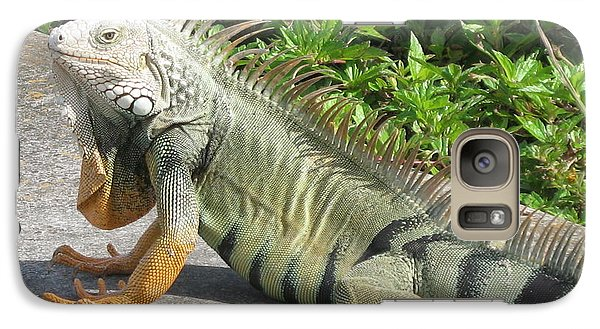 Galaxy Case featuring the photograph Iguania Sunbathing by Christiane Schulze Art And Photography