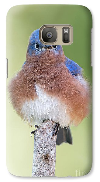 Galaxy Case featuring the photograph I May Be Fluffy But I'm No Powder Puff by Bonnie Barry