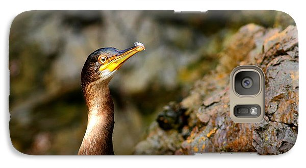 Galaxy Case featuring the photograph Immature Shag by Richard Patmore