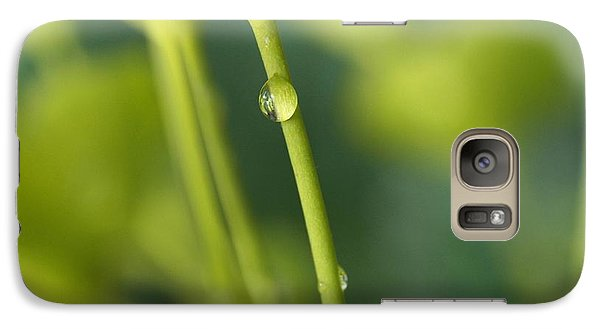 Galaxy Case featuring the photograph In A Forest Of Spurge  by Connie Handscomb