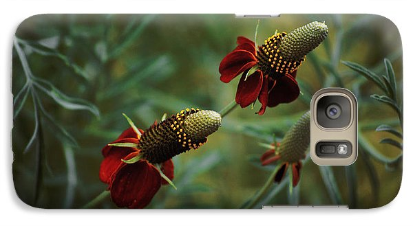 Galaxy Case featuring the photograph In Rousseaus Garden by Douglas MooreZart