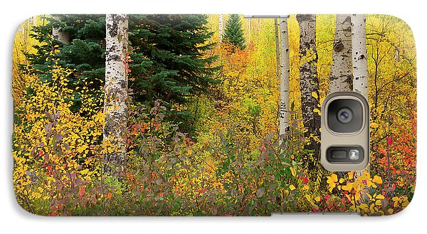 Galaxy Case featuring the photograph In The Depths Of Autumn Woods by Tim Reaves