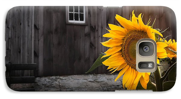 Sunflower Galaxy S7 Case - In The Light by Bill Wakeley
