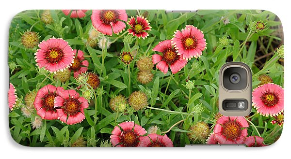 Indian Blanket Flowers Galaxy S7 Case