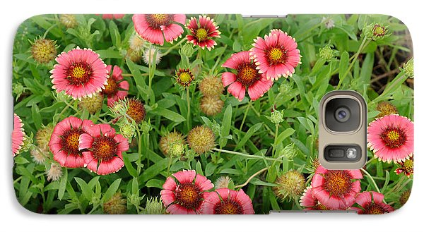 Galaxy Case featuring the photograph Indian Blanket Flowers by Bradford Martin