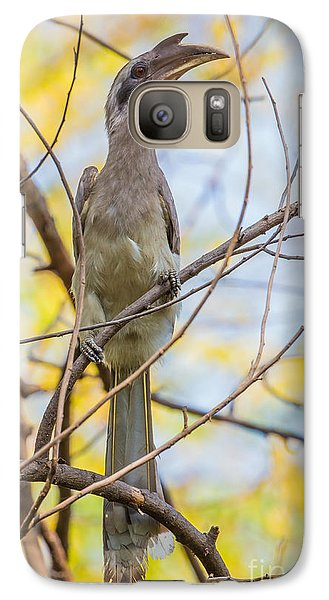 Indian Grey Hornbill Galaxy S7 Case by B. G. Thomson