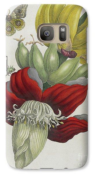 Inflorescence Of Banana, 1705 Galaxy S7 Case