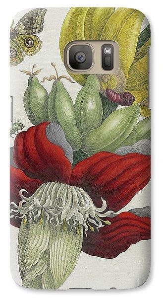 Inflorescence Of Banana, 1705 Galaxy Case by Maria Sibylla Graff Merian