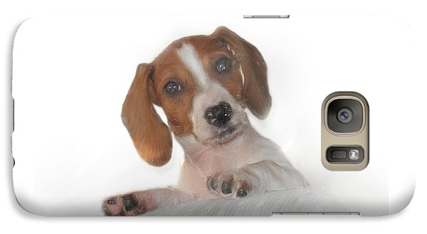 Galaxy Case featuring the photograph Inquisitive Dachshund by David and Carol Kelly