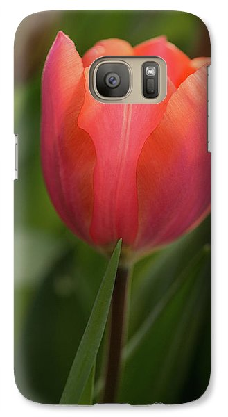 Galaxy Case featuring the photograph Iridescent Tulip by Mary Jo Allen