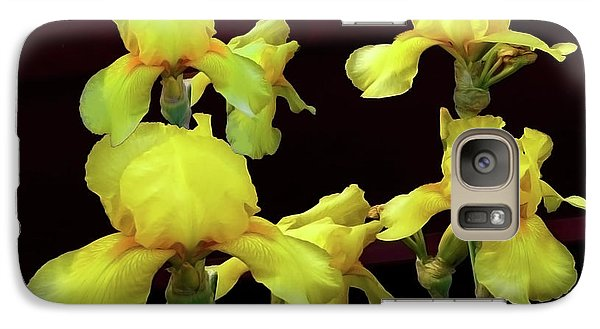 Galaxy Case featuring the photograph Irises Yellow by Jasna Dragun