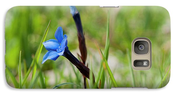 Galaxy Case featuring the photograph Irish Gentians by Rob Hemphill