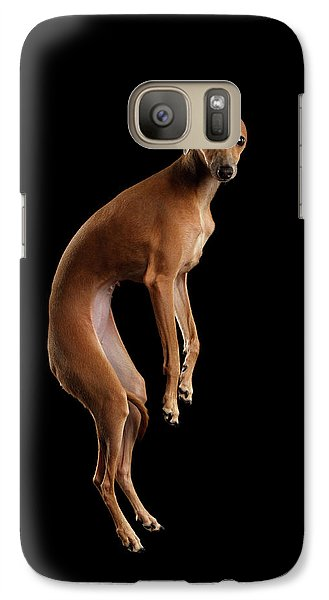 Dog Galaxy S7 Case - Italian Greyhound Dog Jumping, Hangs In Air, Looking Camera Isolated by Sergey Taran