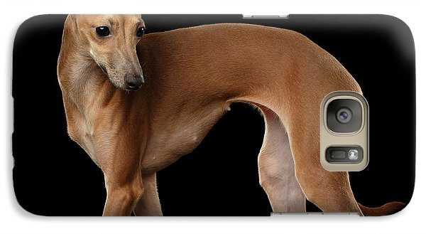Italian Greyhound Dog Standing  Isolated Galaxy S7 Case