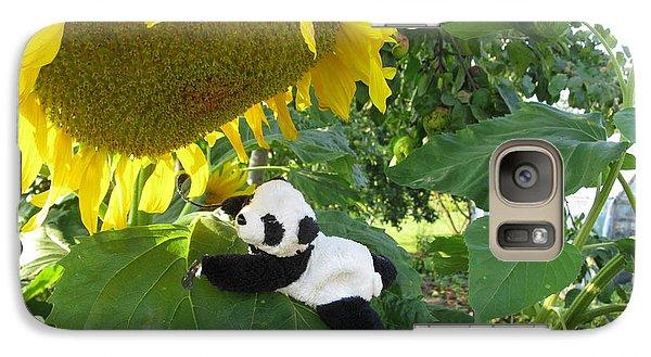 Galaxy Case featuring the photograph It's A Big Sunflower by Ausra Huntington nee Paulauskaite
