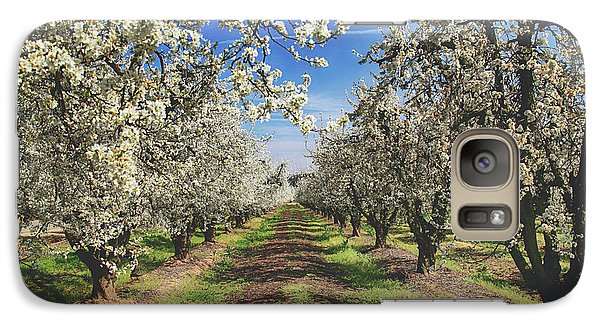 Galaxy Case featuring the photograph It's A New Day by Laurie Search