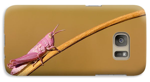 Grasshopper Galaxy S7 Case - It's Not Easy Being Pink by Roeselien Raimond