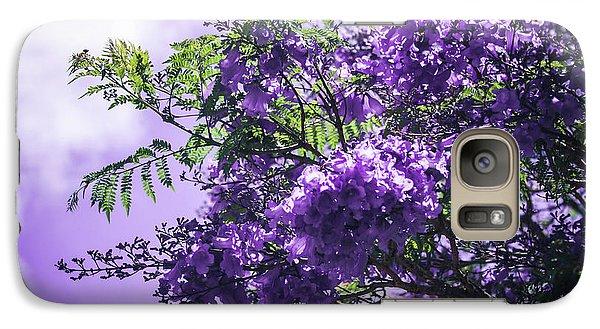Galaxy Case featuring the photograph Jacaranda Mimosifolia Kula Maui Hawaii by Sharon Mau