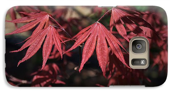 Galaxy Case featuring the photograph Japanese Maple by Mary Zeman