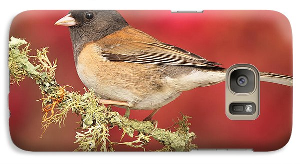 Galaxy Case featuring the photograph Junco Against Peach Blossoms by Max Allen