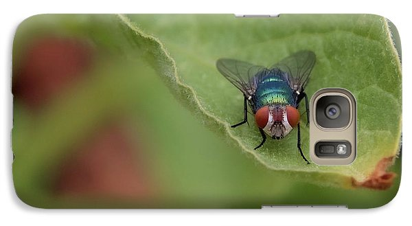 Galaxy Case featuring the photograph Just A Fly by Scott Holmes