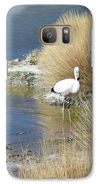 Juvenile Flamingo No. 64 Galaxy S7 Case by Sandy Taylor