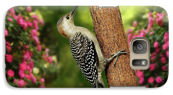 Galaxy Case featuring the photograph Juvenile Red Bellied Woodpecker by Darren Fisher