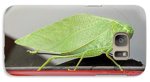 Katydids- Bush Crickets Galaxy S7 Case