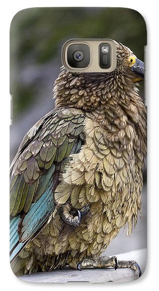 Galaxy Case featuring the photograph Kea Bird by Sally Weigand