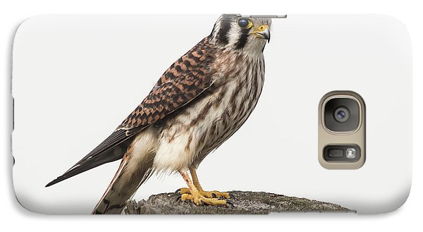 Galaxy Case featuring the photograph Kestrel Portrait by Robert Frederick