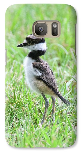 Killdeer Galaxy S7 Case - Killdeer Chick 3825 by Michael Peychich