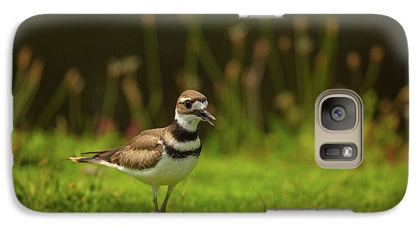 Killdeer Galaxy S7 Case by Karol Livote