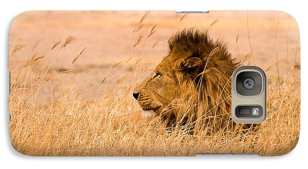 Galaxy Case featuring the photograph King Of The Pride by Adam Romanowicz