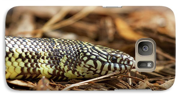 Galaxy Case featuring the photograph King Snake 1 by Arthur Dodd