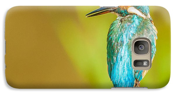 Kingfisher Galaxy Case by Paul Neville