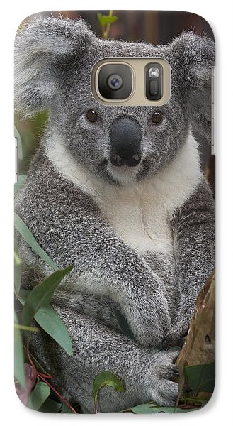 Koala Phascolarctos Cinereus Galaxy S7 Case