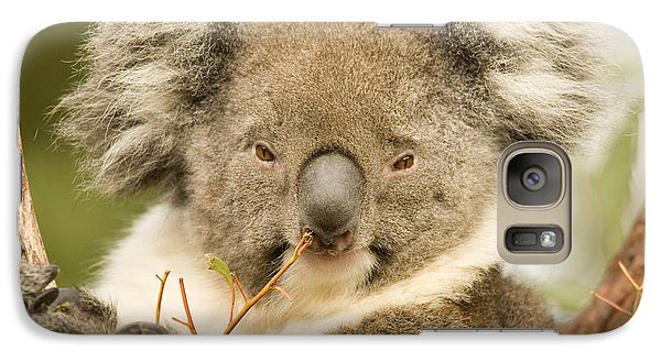 Koala Snack Galaxy S7 Case