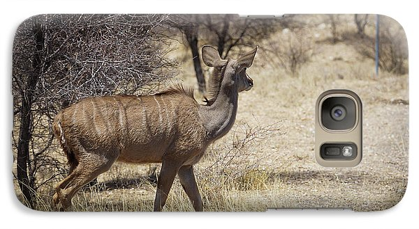 Galaxy Case featuring the photograph Kudu Crossing by Ernie Echols