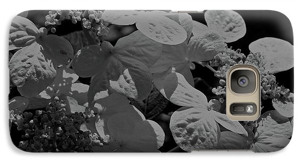 Galaxy Case featuring the photograph Lace Cap Hydrangea In Black And White by Smilin Eyes  Treasures