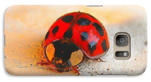 Galaxy Case featuring the photograph Lady Bug 2 by John King