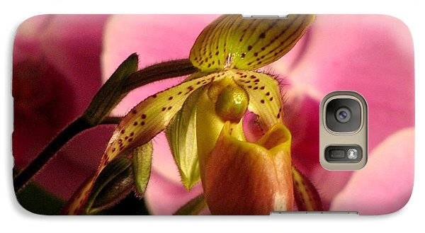 Galaxy Case featuring the photograph Ladyslipper With Pink by Alfred Ng