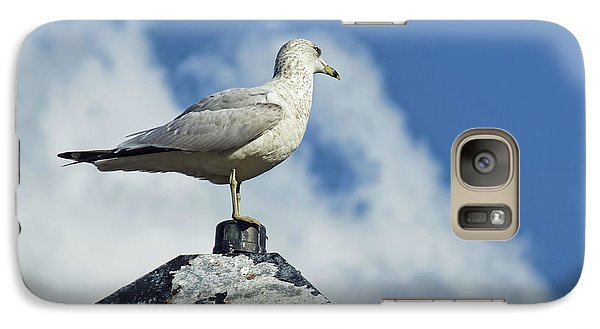 Galaxy Case featuring the photograph Lamp Post Eddie by Jan Amiss Photography
