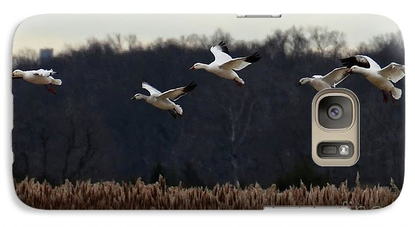 Galaxy Case featuring the photograph Landing by Tamera James